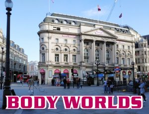 RSF at Piccadilly Circus Body Worlds Expo